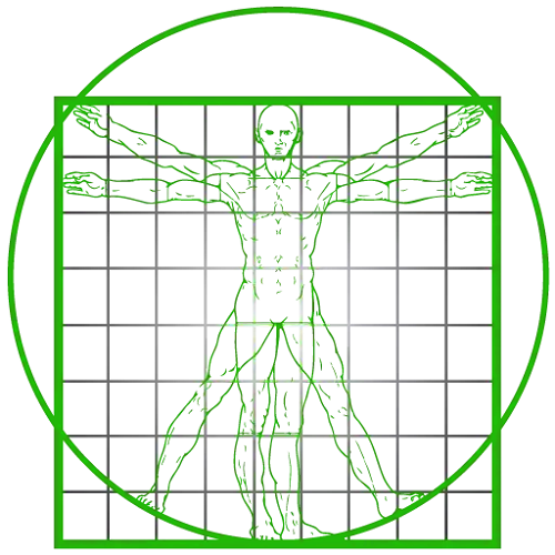 solid_state_fitness_logo